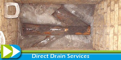 Removal of tree roots from drains